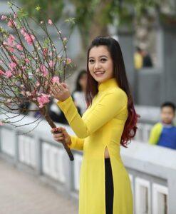 Ao Dai Vietnam Yellow Chiffon