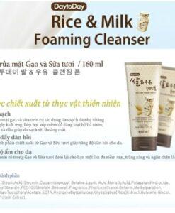 Daytoday Enesti Rice Milk Cleanser 2