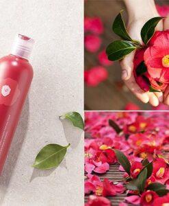 Innisfree Camellia Korea Shampoo 1